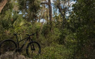 Mountain Biking Balm Boyette Preserve