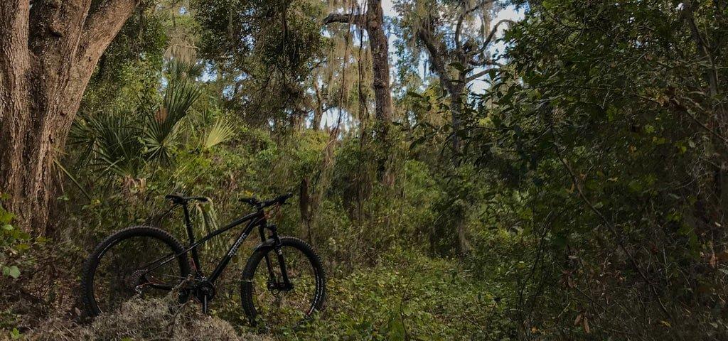 Mountain Biking Balm Boyette Preserve