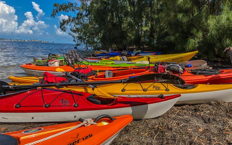 Kayaking Robinson Preserve