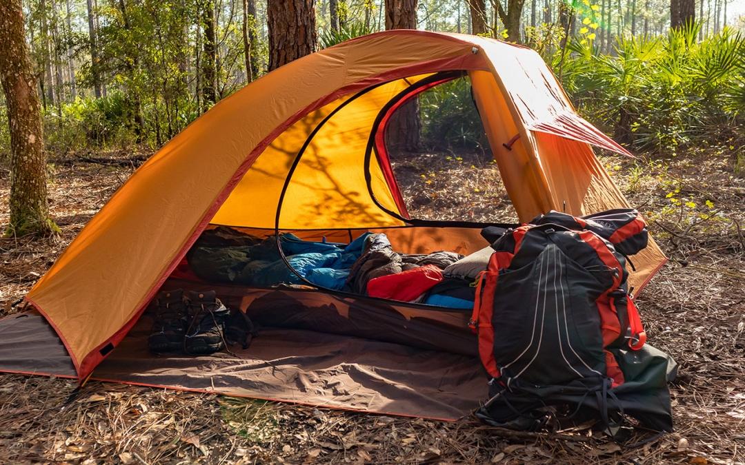 Video: Backpacking Green Swamp East