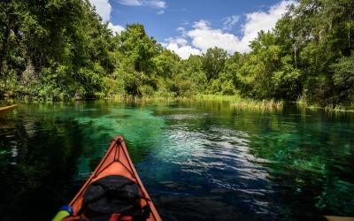 Kayaking Gum Slough Springs