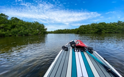 Paddle Boarding, wait, what?